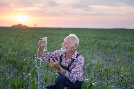 Senior farmer squatting beside rain gauge in corn field at sunset Banco de Imagens