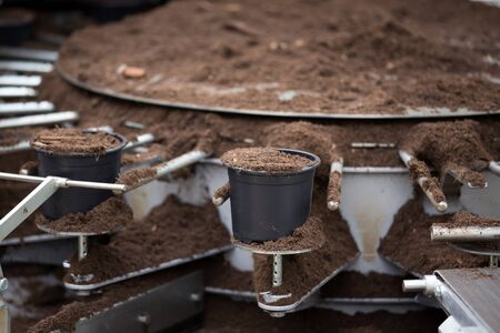 Close up of plants  potting machine filling jardinieres with soil Stockfoto