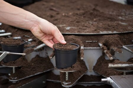 Close up of hand holding flower pot above soil potting machine