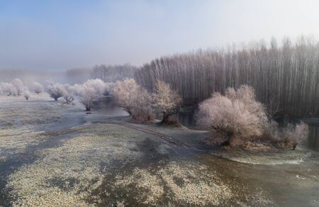 Aerial image of winter landscape of river and trees with dew in Koviljski rit in Serbia, shoot from drone