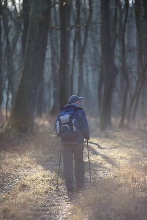 Mature hiker with sticks and backpack walking in forest on cold but sunny winter morning Zdjęcie Seryjne