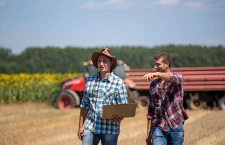 Two farmers walking in wheat field during harvest. Tractor with trailer for grains in background