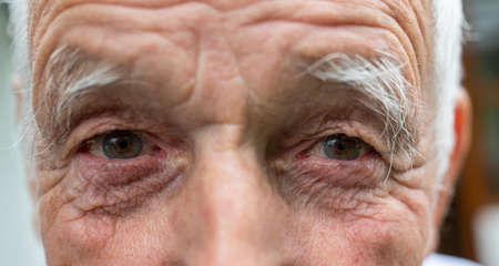 Close up of old man eyes with wrinkled skin. Happy expression from look Archivio Fotografico