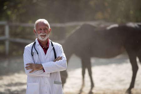 Portrait of senior veterinarian in white coat standing in front of horses on ranch