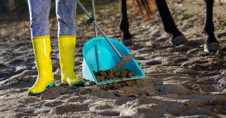 Girl collecting horse excrement in shovel at stableyard