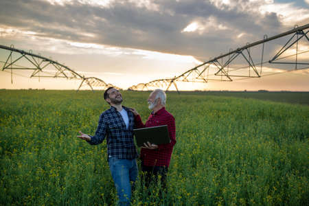 Two farmers standing in rapeseed field satisfied smiling. Men laughing using laptop technology. Center pivot irrigation system innovation in agriculture.
