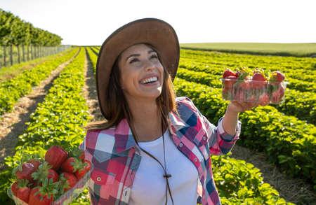 Farmer woman holding fresh ripe strawberries on plantation just picked up Stockfoto