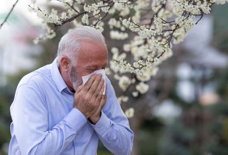 Old man with allergy symptoms sneezing into tissue. Senior suffering from hay fever coughing outside.