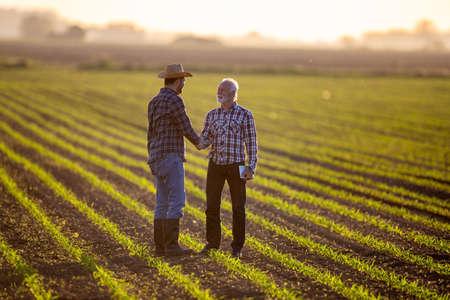 Farmers reaching agreement deal standing in corn field. Two men shaking hands satisfied happy. Archivio Fotografico