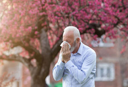 Senior man coughing into handkerchief tissue. Elderly persn suffering from hay fever rhinitis.