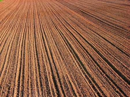 ploughed field in autumn