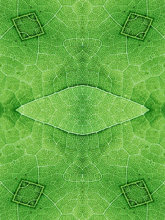 extreme close up: abstract green background Stock Photo