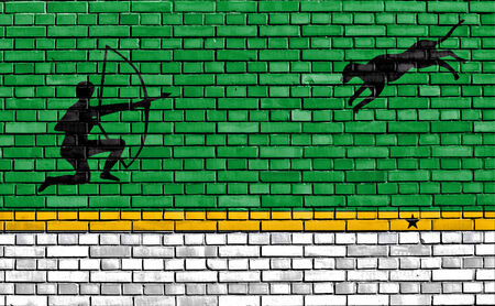amazonas: flag of Amazonas Department painted on brick wall