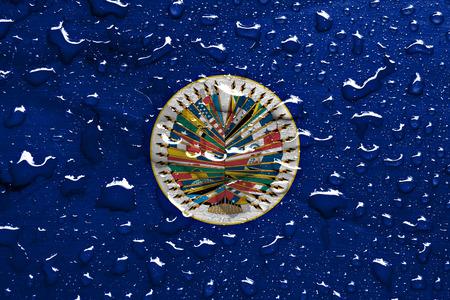 雨で米州機構のフラグを削除します。