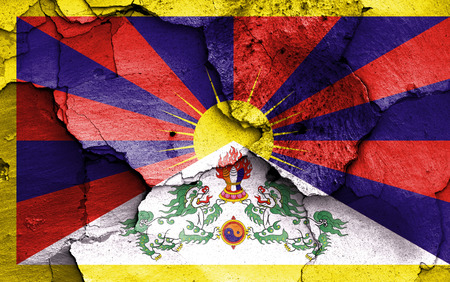 cracked wall: flag of Tibet painted on cracked wall Stock Photo