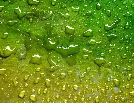 hintergrund gr�n gelb: Wassertropfen auf metallischen Oberfl�che gr�n gelb