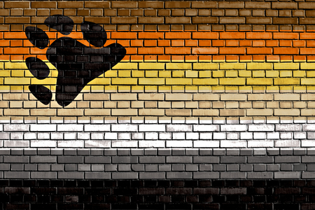 sex discrimination: International Bear Brotherhood flag painted on brick wall