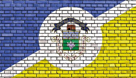 winnipeg: flag of Winnipeg painted on brick wall