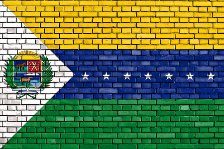 flag of Apure State painted on brick wall