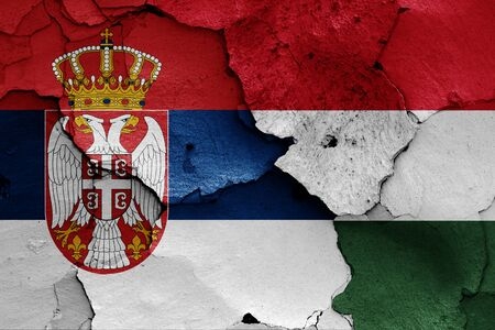 flags of Serbia and Hungary painted on cracked wall Zdjęcie Seryjne