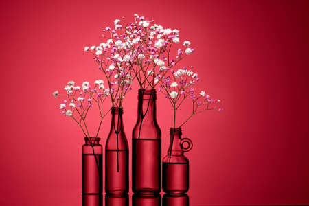 Two small bouquets of gypsophila in bottles on a red background. Copy spase. Invitation
