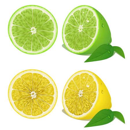 Citroen en limoen Stock Illustratie