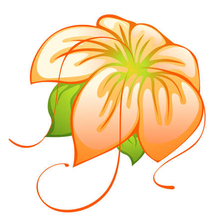 single beautiful orange vector flower