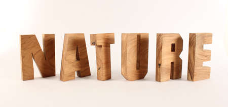 naturholz: NATURE text from wood letters Holz Buchstaben white Background Stock Photo