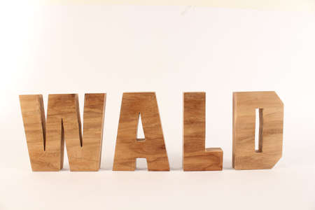lettre: WALD German text from wood letters Holz Buchstaben white background straight