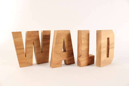 naturholz: WALD German text from wood letters Holz Buchstaben white Background Stock Photo
