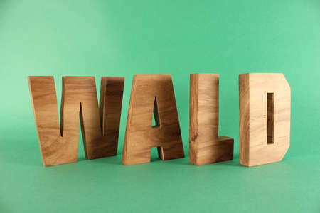 naturholz: WALD German text from wood letters Holz Buchstaben black Background