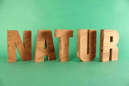 NATUR German text from wood letters Holz Buchstaben green Background