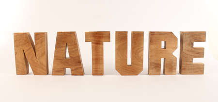 lettre: NATURE text from wood letters Buchstaben white Background straight