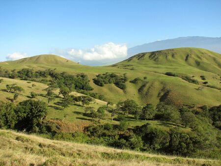 ridged: A ridged and crumpled Hawaiian landscape with deep canons and folds on the Big Island Hawaii.