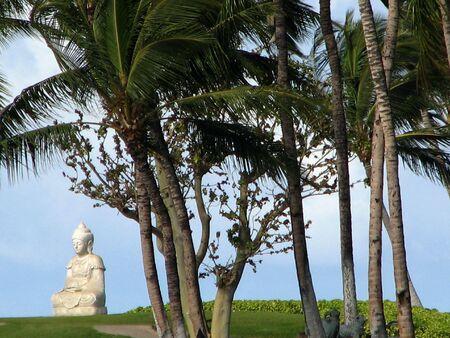 A white Buddha Statue on a tropical island.