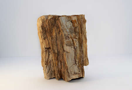 Red Petrified Wood. This came off of my old property in Arizona. Stock Photo