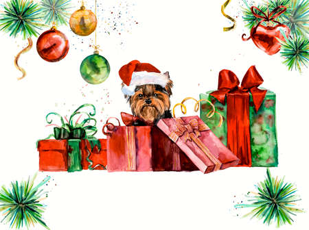christmas animal: Yorkshire terrier. Ridiculous puppy background, watercolor composition. Hand-drawing water color. Illustration. New year card.
