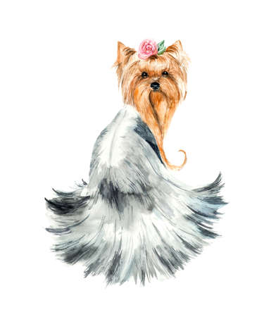 yorkshire terrier: Dog with a rose. Yorkshire terrier. Pink flower and hair dress. Ridiculous puppy background, watercolor composition. Watercolor hand drawn illustration