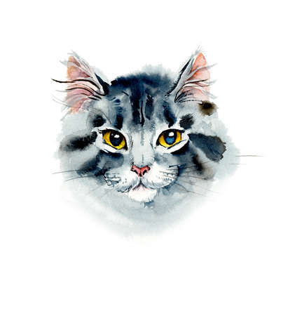 spotted fur: Kitten. Watercolor hand drawn illustration Stock Photo