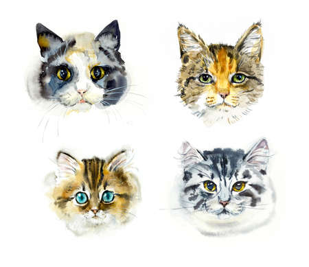 Four cats. Portrait animals. Watercolor hand drawn illustration