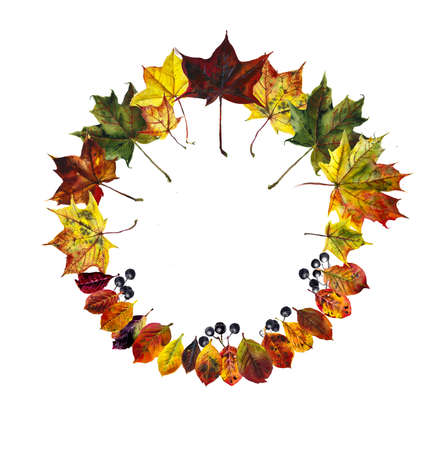 Circle frame from fallen leaves. Autumn collection. Watercolor hand drawing illustration