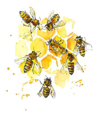 Bees and honeycombs. Watercolor hand drawing illustration 版權商用圖片