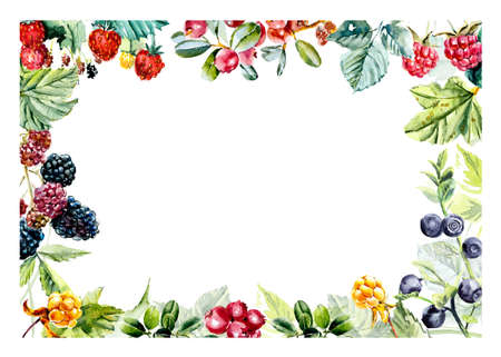 Frame from berries.  hand drawn illustration