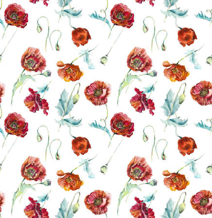 Poppies. Seamless pattern. Hand drawn illustration