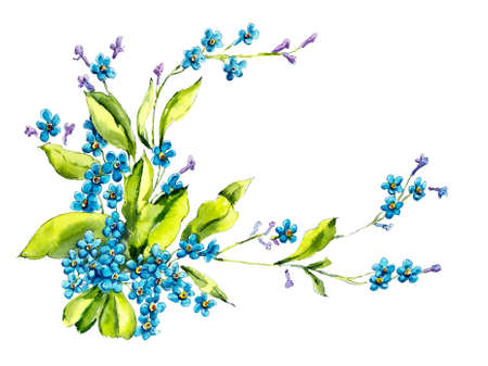 Forget me not brunch. Watercolore hand drawn illustration