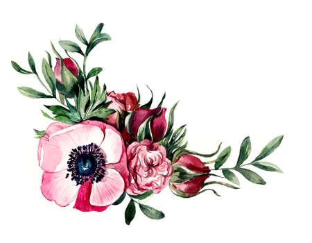 Composition with pink colors. Anemone. Watercolore hand drawn illustration