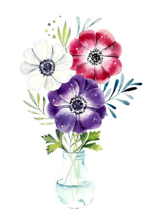 Bouquet of flowers anemone in transparent vase. Greeting cards. Flower backdrop. Watercolor hand drawn illustration