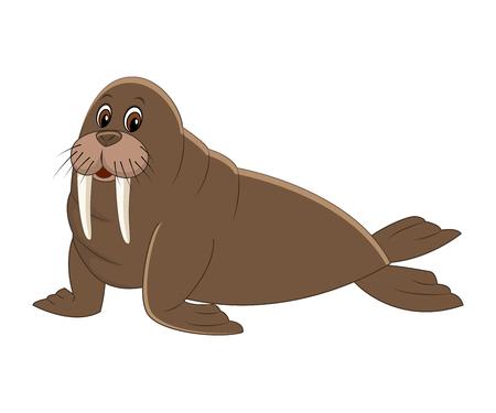 Cute cartoon walrus. Arctic  animal. Vector illustration isolated on white background.