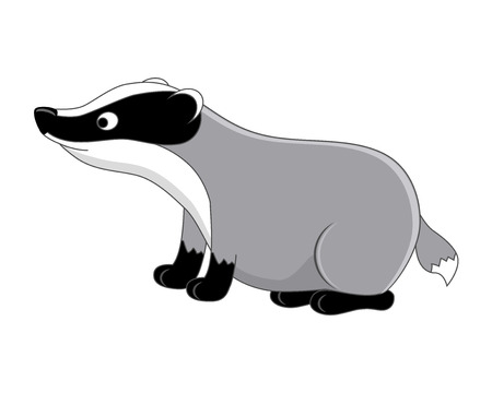 Funny cartoon badger. Vector illustration.  Isolated on white background.  Forest animals. Woodland animals.