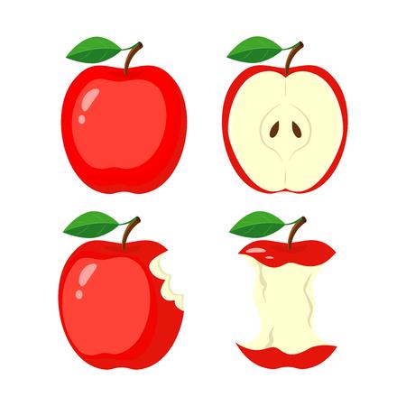 Whole red apple, half apple slice, bitten apple, stub. vector illustration isolated on white background. Illustration